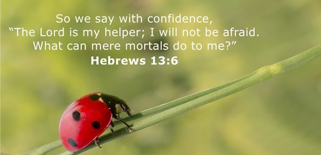 """So we say with confidence, """"The Lord is my helper; I will not be afraid. What can mere mortals do to me?"""""""
