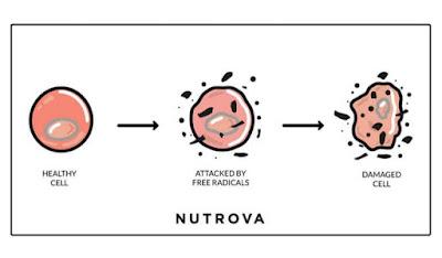 Sel tubuh yang tidak sihat
