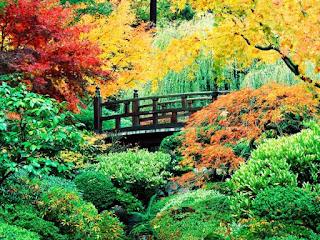 الحديقة اليابانية المذهلة أمريكا japanesegarden3.jpg
