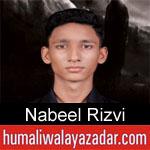 https://www.humaliwalyazadar.com/2018/09/nabeel-rizvi-nohay-2019.html