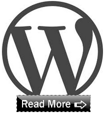 Read More Button in WordPress