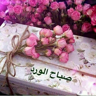 صباح الورد , صور صباح الورود والحب والجمال والعسل , احلي صور ورد مكتوب عليها صباحك ورد