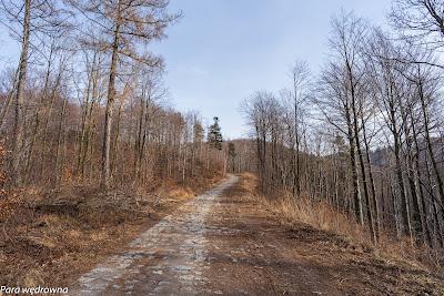 Szlak czarny między Wałbrzychem (ul. Poznańska) a Rozdrożem pod Dłużyną
