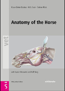 Anatomy of the Horse 5th Edition