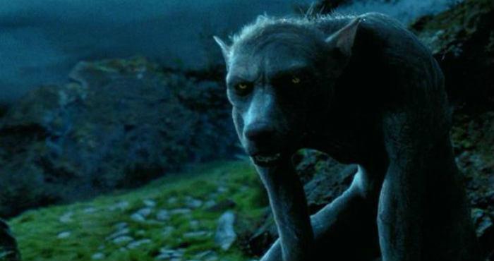Mitos Atau Nyata Tentang Manusia Serigala