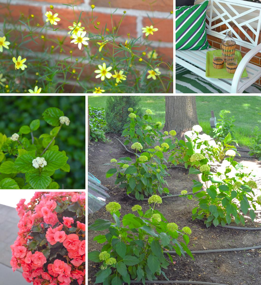 front garden makeover, shady front garden, garden makeover, front garden layout