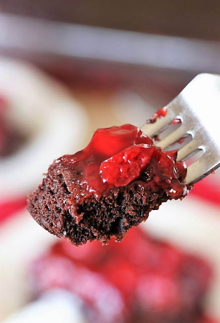 Bite of Chocolate Cherry Upside Down Cake Image