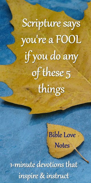 This 1-minute devotion shares 5 ways that we wrongly celebrate foolishness. It includes a quote by a famous missionary. #BibleLoveNotes #Bible