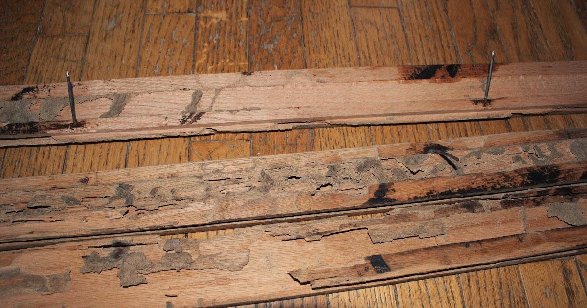 hochwertige baustoffe laying laminate over old floorboards