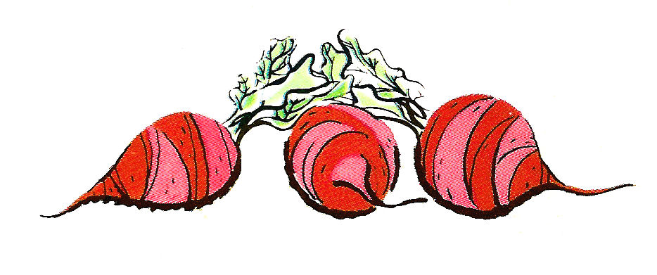 free clipart beets - photo #30