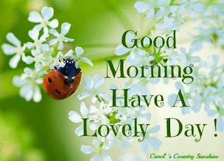 good morning wishes images whatsapp messages