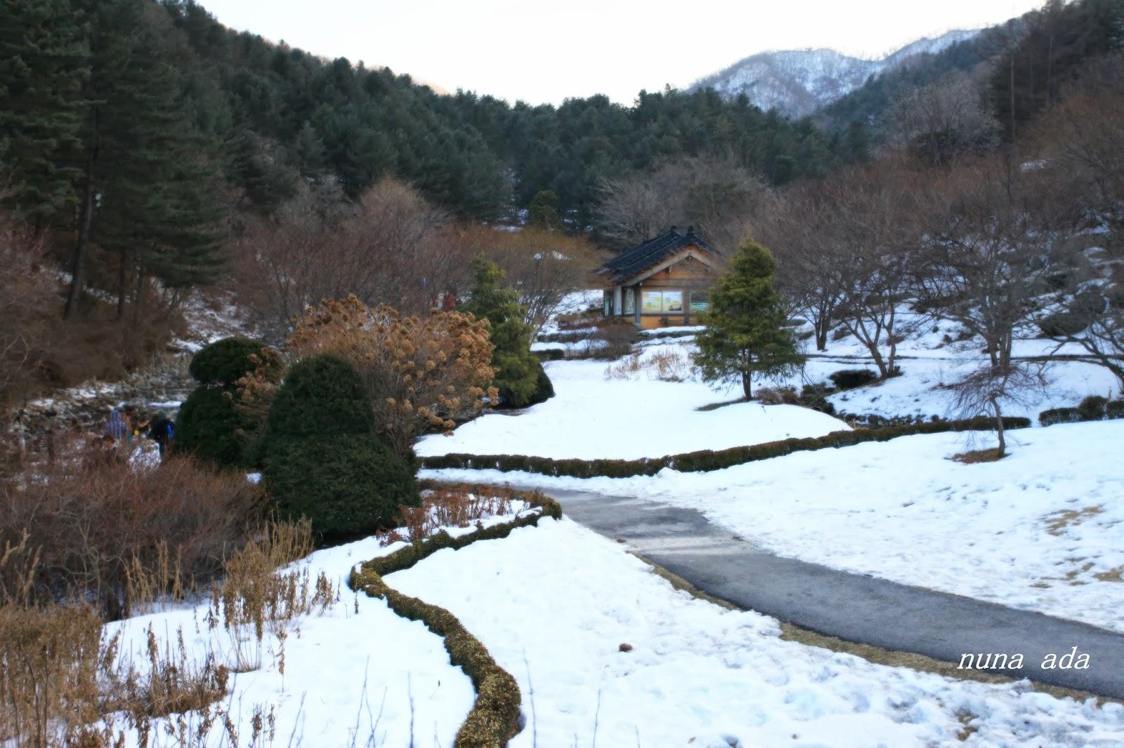** 韓攝女生~四季樂遊誌 : 韓冬(二): 晨靜樹木園