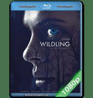 CRIATURAS NOCTURNAS (2018) 1080P HD MKV ESPAÑOL LATINO