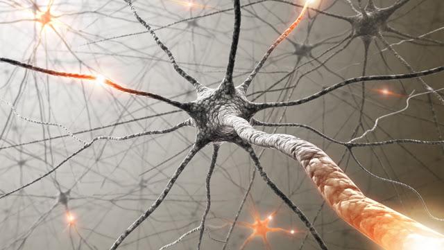 tratament pentru scleroza multipla