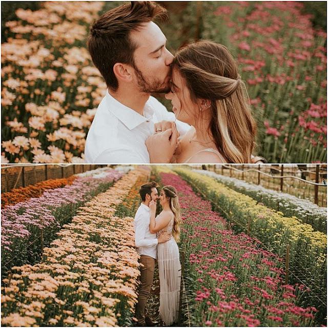ensaio de fotos holambra cidade das flores