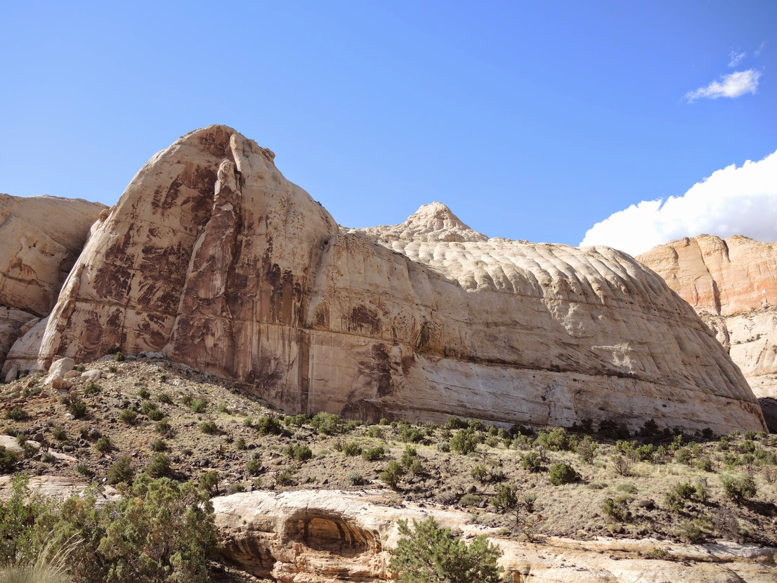 Capitol Reef National Park 18