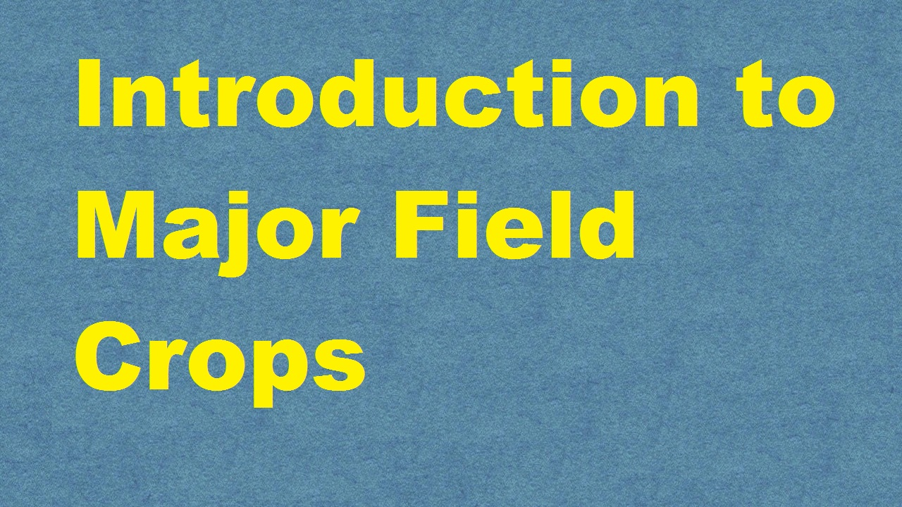 Introduction to Major Field Crops ICAR E course Free PDF Book Download e krishi shiksha