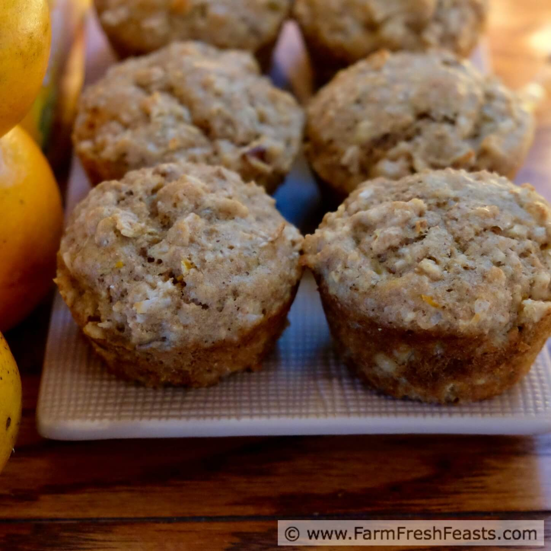 Muffins PLUS
