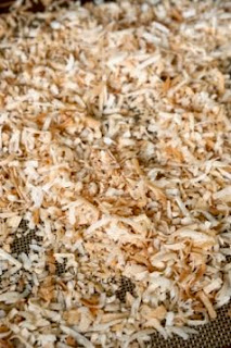 Toasted Coconut: Savory Sweet and Satisfying