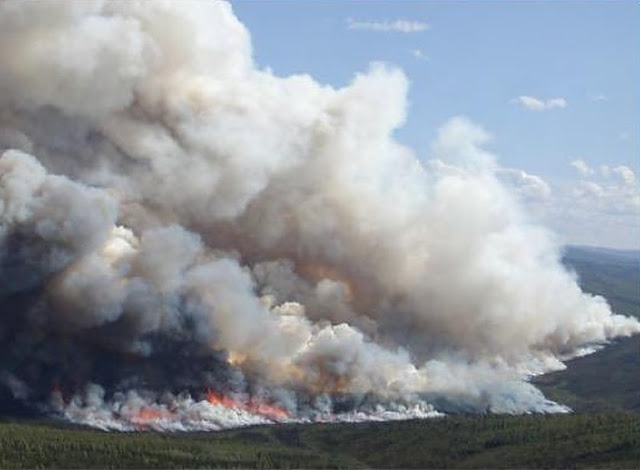 The Arctic is burning in a whole new way