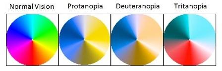 Dikhromat (Dichromacy)
