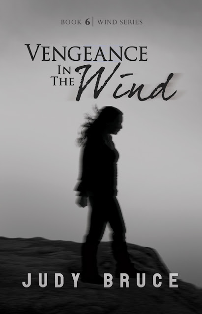 Vengeance in the Wind (Wind Series Book 6) by Judy Bruce