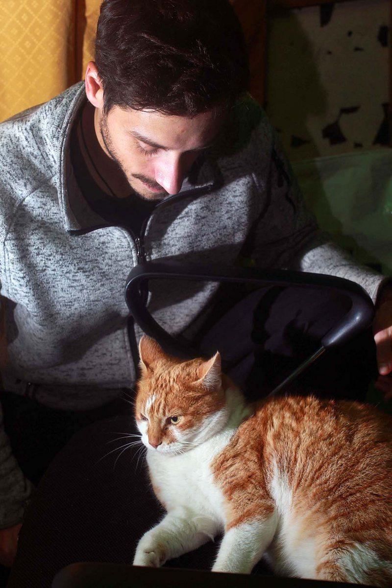 Estudio revela que mujeres encuentran poco atractivos a hombres que posan con gatos en su perfil