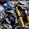Yamaha MT15 Indonesia Spesifikasi dan Kisaran Harga (Tersedia Varian Murah Kah?)