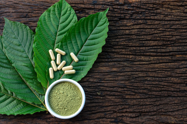 Kratom User Guide: How To Take Kratom The Right Way