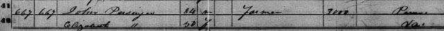 1850 census John Persinger Virginia
