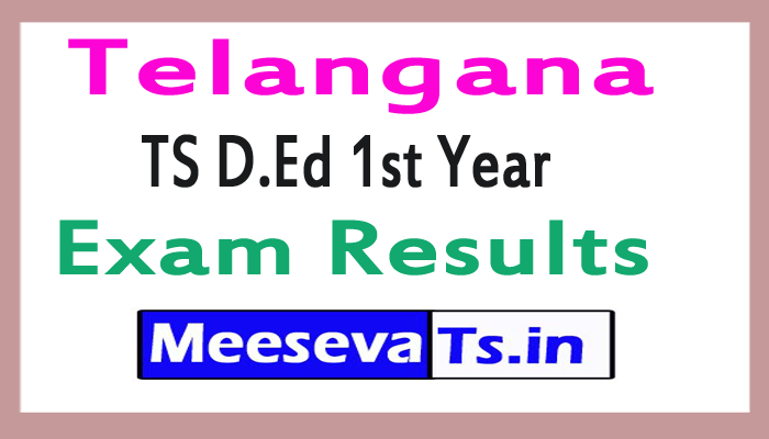 TS D.Ed 1st Year Exam Results 2017