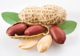 moongphali(peanuts) ke faide in urdu