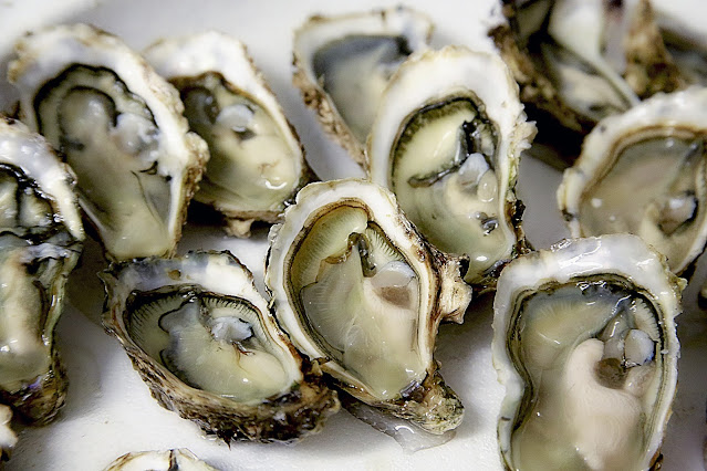 """alt=""""oysters"""""""