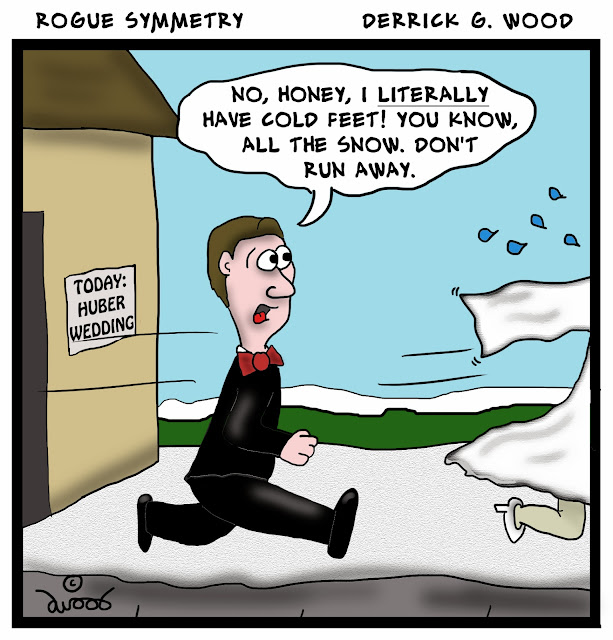 Rogue Symmetry cartoons by Derrick G. Wood
