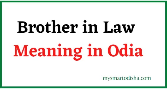 Brother in Law Meaning in Odia, Brother in Law Odia Meaning