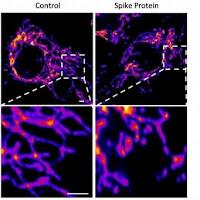BOMBA: Proteína Spike covid nas vacinas é o que está causando coágulos sanguíneos e outros efeitos mortais