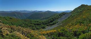 https://konicoleando.blogspot.com/2019/07/monte-los-gavilanes-por-las-branas.html