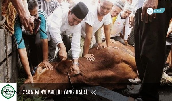halalan toyyiban, jelaskan manfaat makanan yang halal dan baik, jelaskan pengertian makanan yang halal, contoh makanan halal dan thayyib