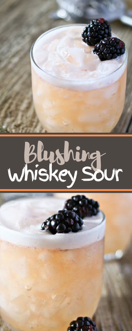 Blushing Whiskey Sour #healthydrink #drinkrecipe #smoothiehealthy #cocktail