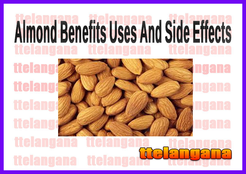 Almond Benefits Uses And Side Effects