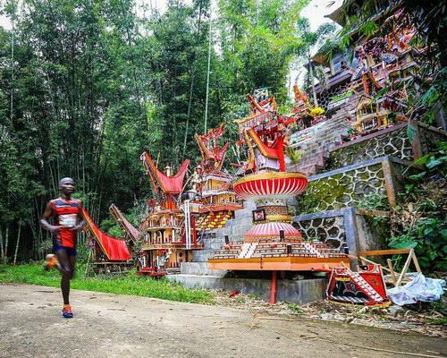 Tinuku.com Travel Toraja Marathon invites professional runners to explore the home of ancestors in Aluk To Dolo land