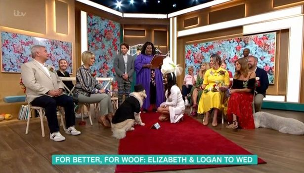 Woman Tearfully Marries Her Dog After Giving Up On Men (Photos)