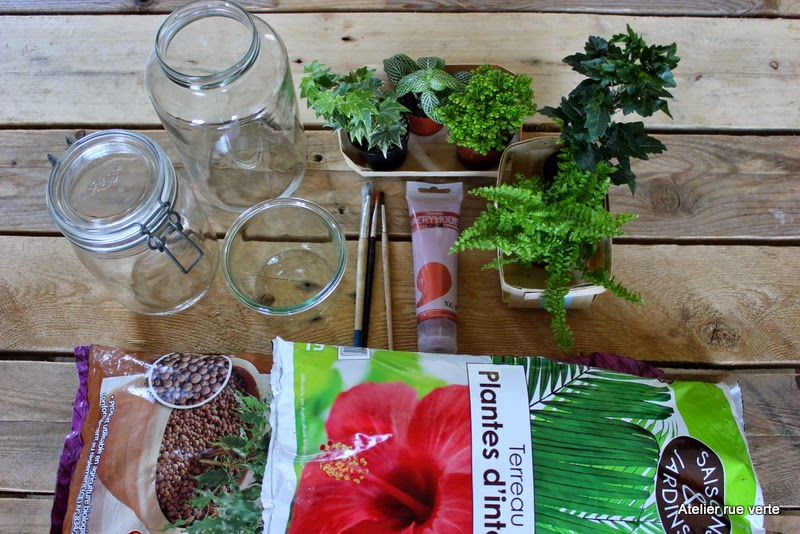 DIY / Mini-jardins/ Photos Atelier rue verte /