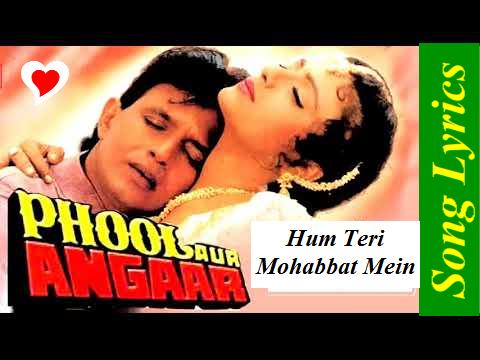 Hum Teri Mohabbat Mein Song lyrics   Phool Aur Angaar Ft. Kumar Sanu