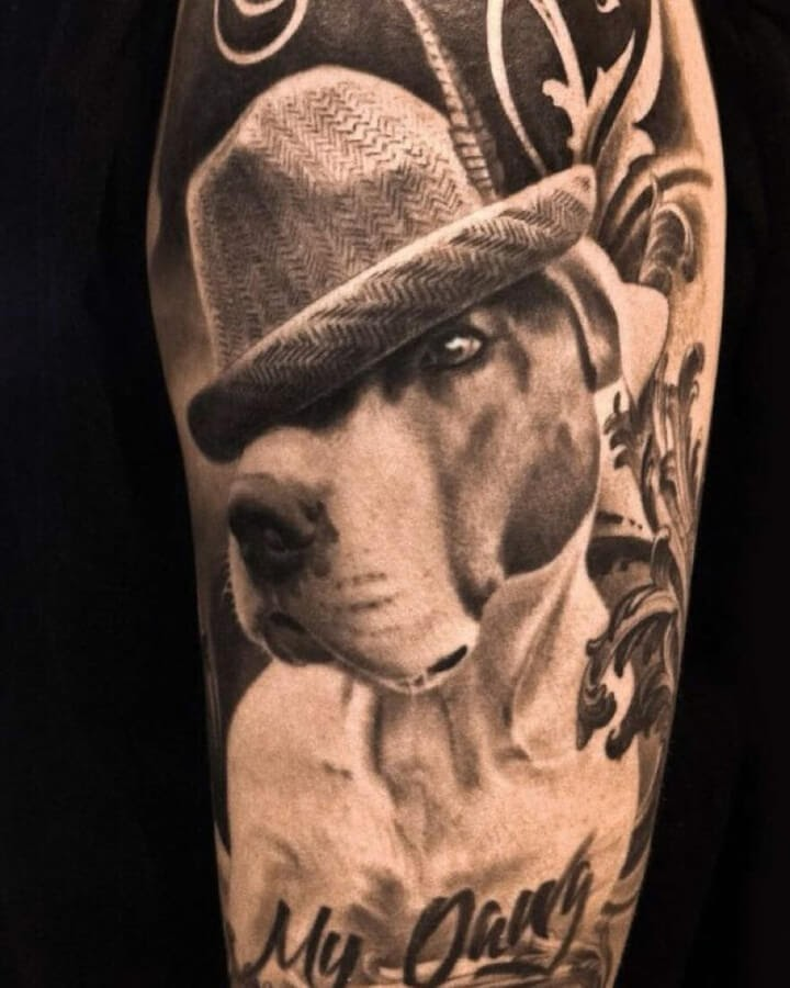 06-Cool-looking-dog-mr-T-www-designstack-co