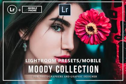 PRESET LIGHTROOM | Preset Lightroom Terbaik tahun 2020 gratis PART 2