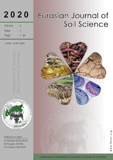 Eurasian Journal of Soil Science