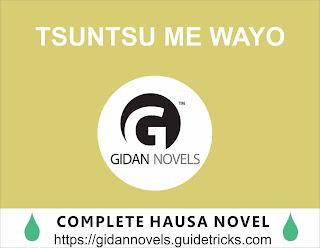 Tsuntsu Me Wayo Hausa Novel Complete