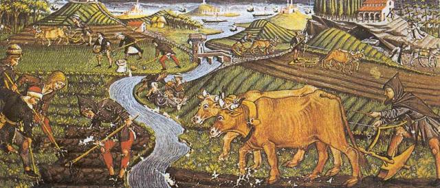 Edad Media y economia rural