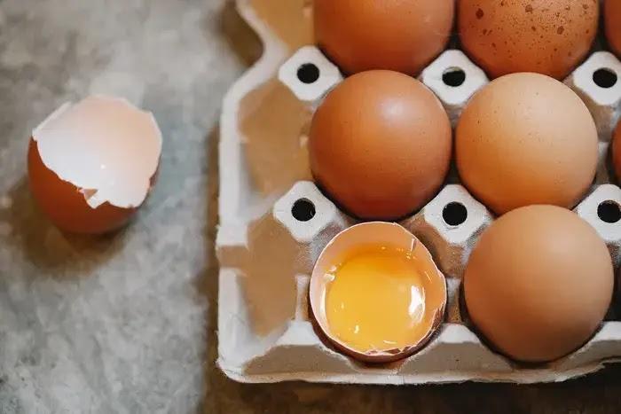 telur, makanan sumber kolin untuk anak dan ibu hamil